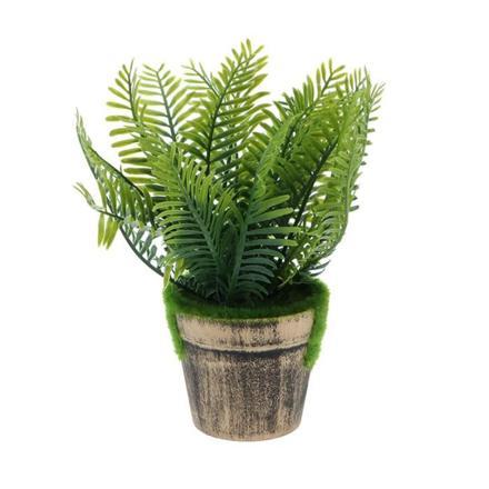 fausse plante