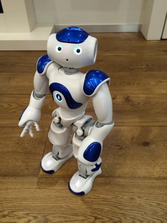 robot companion