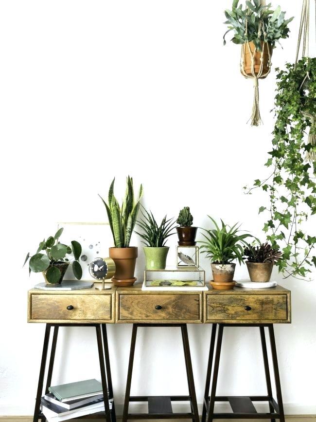 meuble pour plante